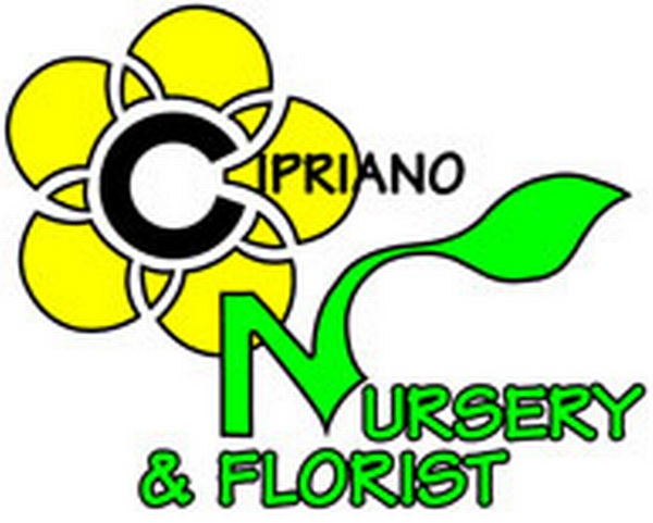 Cipriano Landscaping & Nursery