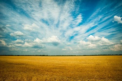 Gallery Image pexels-visionpic-net-1227513.jpg
