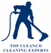Top CleanCo Cleaning Expert