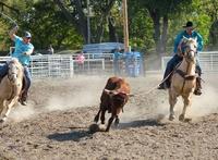 Norton County Horse Council