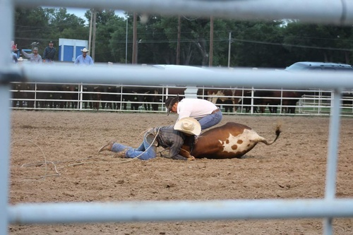 Gallery Image Nt%20Co%20Horse%20Council%20Ranch%20Rodeo%20facebook_1501960151117.jpg