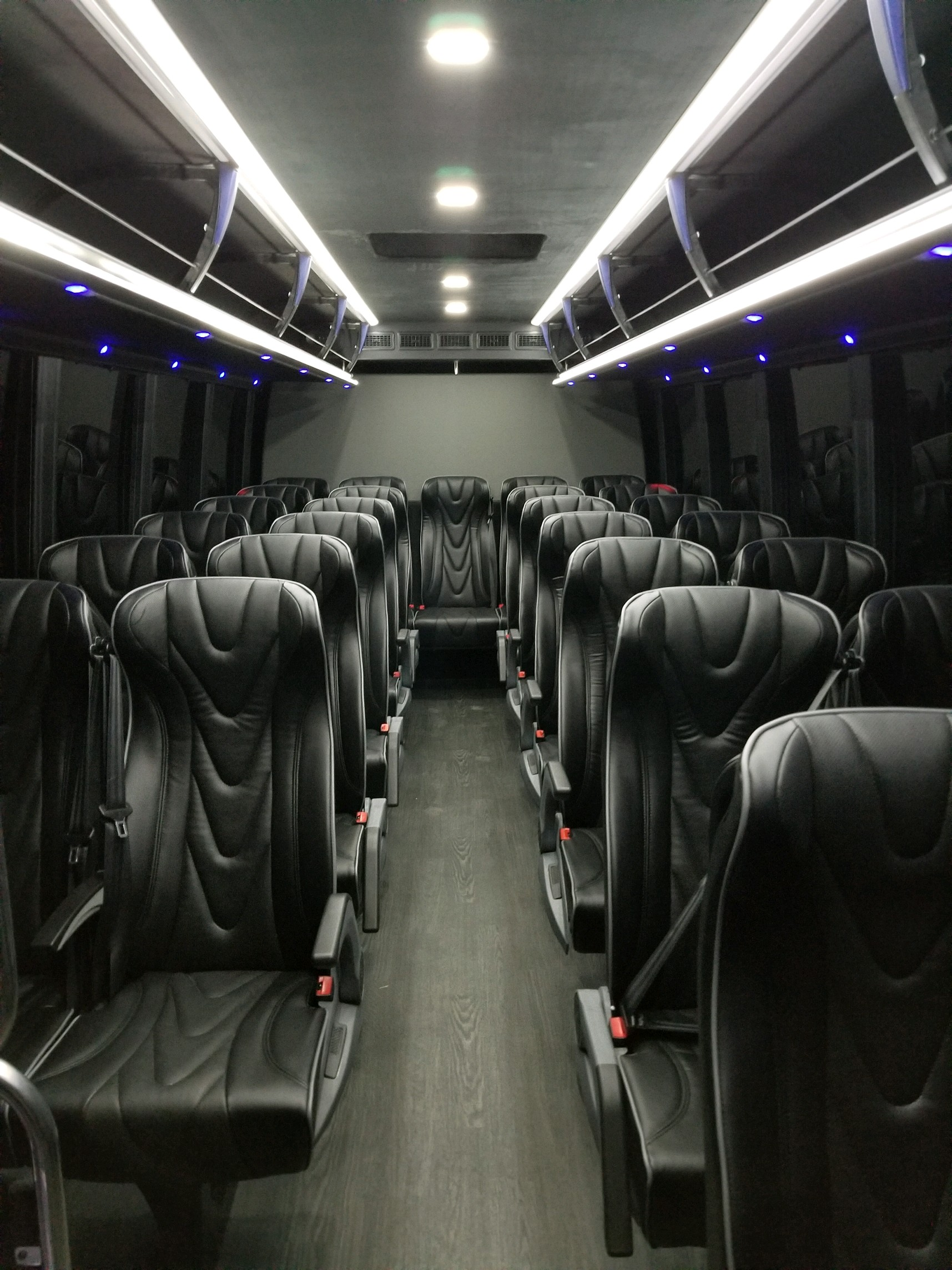 27 passenger luxury coach