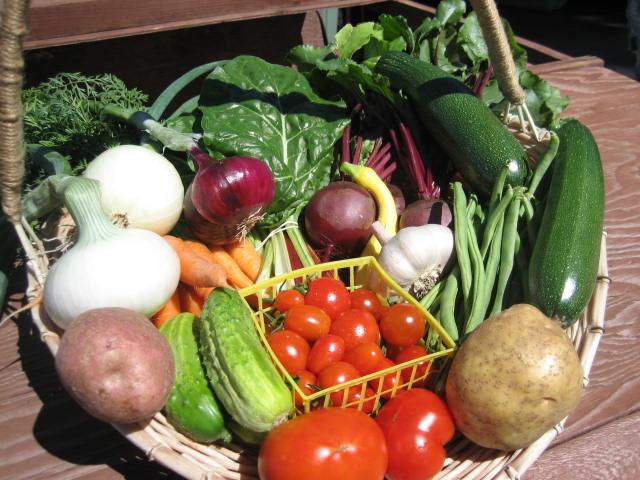 Bigfork Farmers' Market Cooperative