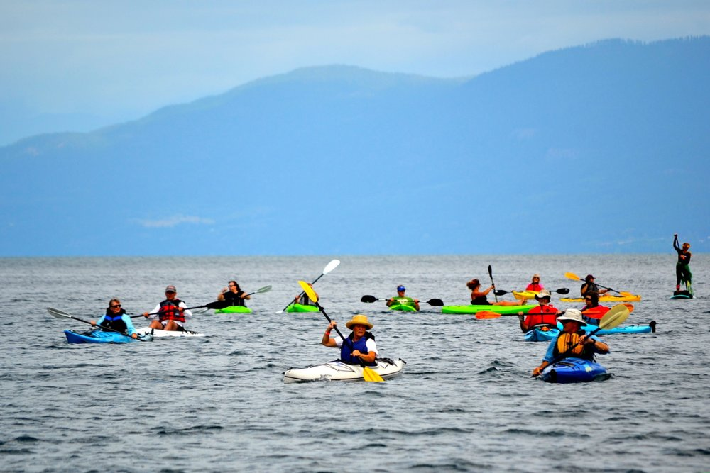 Gallery Image rsz_paddlers_coming_in_-_v3.jpg