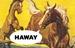 Haway LLC