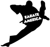 Daniel Turner's Karate America