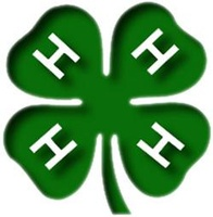 Lake Forest Superstars 4H Club