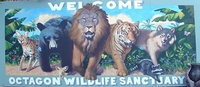 Octagon Wildlife Sanctuary