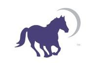 DreamPower Horsemanship