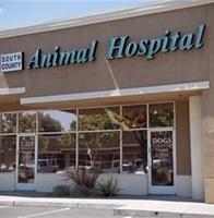 South County Animal Hospital