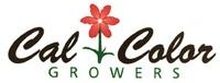 Cal Color Growers, LLC.