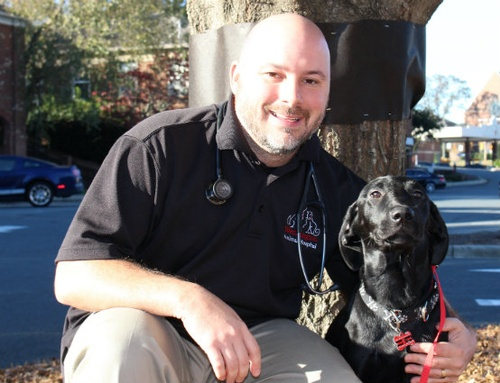 Gallery Image Dr-Ed-Faulkner-Weddington-Animal-Hospital.jpg