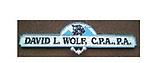 David Wolf, CPA, PA