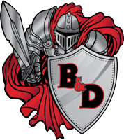 B&D Roofing Solutions Inc.