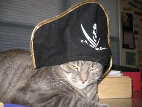Gallery Image daedalus-ely-in-pirate-hat-500-x-375.jpg