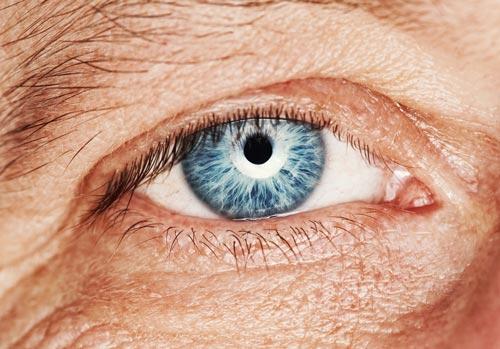 Gallery Image blepharoplasty.jpg