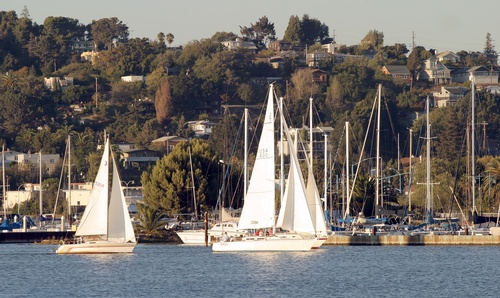 Gallery Image SAILBOATS%201_170518-043413.JPG