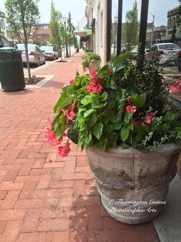 Main Street Planters