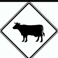 Blazen Butcher Shop, LLC