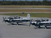 Navy T-6's
