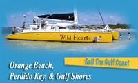 Gallery Image the_gulf_coast_feathered_250112-050618.jpg
