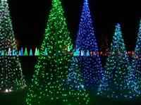 The Emerald Forest on the Great Lawn during Christmas