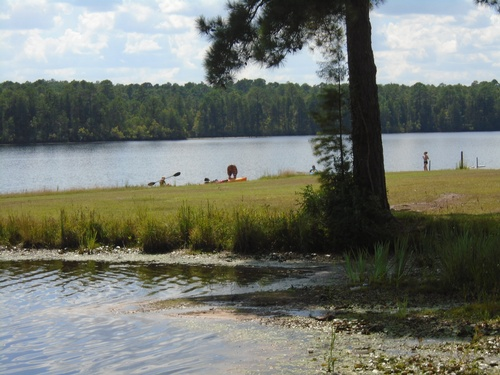 Compny Picnic-Cheraw State Park