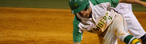 Gallery Image RSHS_Baseball__1_.png