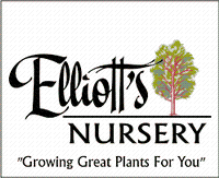 ELLIOTT'S NURSERY