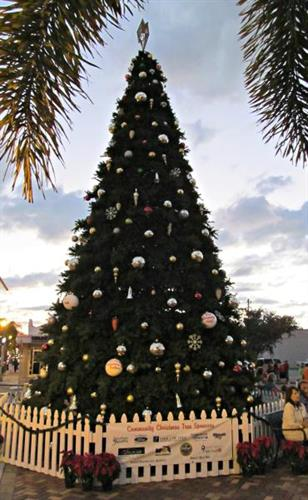City of Punta Gorda Christmas Tree