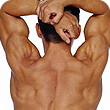 Gallery Image Spinal%204.png