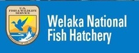 Welaka National Hatchery & Aquarium