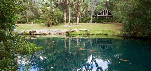 Gallery Image welaka%20state%20forest%202.jpg