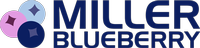 Miller Blueberry Plantation and Nursery