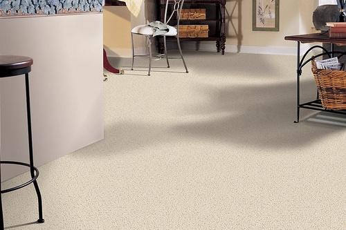Gallery Image service-carpet1-1.jpg