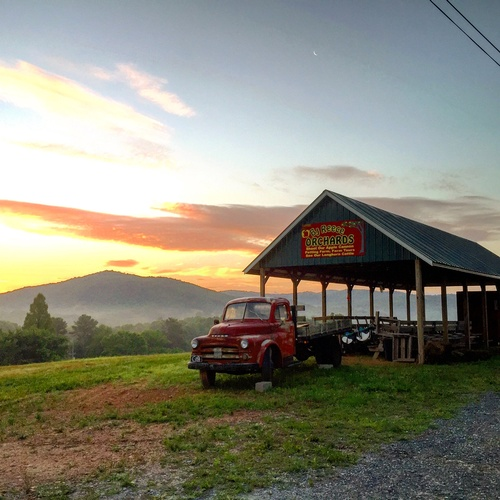 Gallery Image Reece%20Orchards%20Sunset.JPG