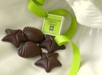 Bittersweet Chocolate Seashore Collection