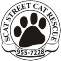 SCAT Street Cat Rescue Program Inc.