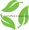 Tarver's Plant Connection