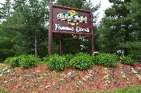 Welcome to Grand Pines Resort
