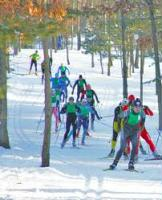 Gallery Image skiers%20through%20the%20trees.jpg