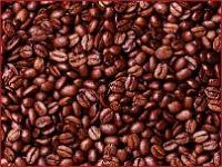Gallery Image beans(1).jpg