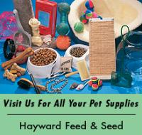 Gallery Image pet%20supplies.jpg