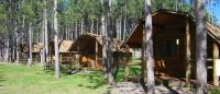 a variety of different cabins to chose from