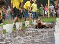 Fun weekends!  Each weekend has a theme...try Chocolate Weekend with kids competing in the chocolate pudding slide and chocolate eating contests!