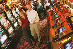hundreds of slot machines to chose from