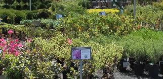 Gallery Image gardens.jpg