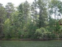 On the lake, a step from the lake, a lot to build on, acreage for your hobby?  We will fit your needs!