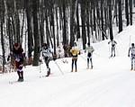 Gallery Image skiing.jpg