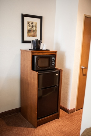 Fridge and Microwave set up in every room